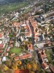 Občina Slovenske Konjice je boter jablane carjevič