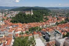 Mestna občina Ljubljana je boter domači češplji