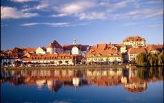Mestna občina Maribor je boter jablani priolov delišes